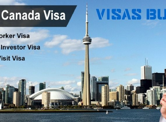 Visa and immigration services